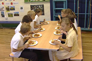 Hot School Meals Lincolnshire
